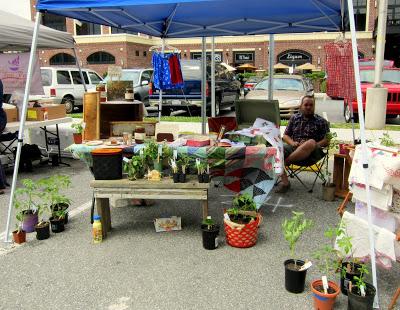 Public Service Announcement: Schoolhouse Farm and the South Elm Urban Market