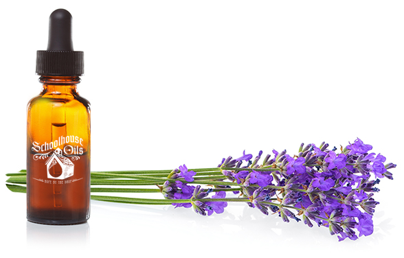 Homesteaders Lavender Essential Oil