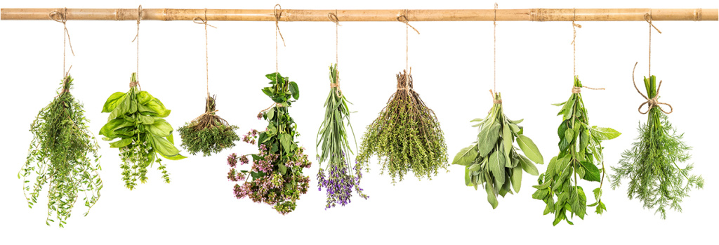 Essential Oils Herbs Hanging